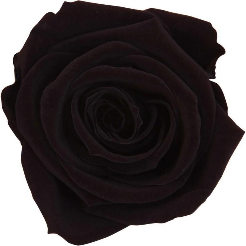 Rose stabilisée Standard Boite de 6 têtes Noir