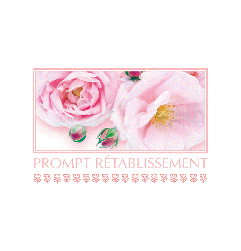 "CARTE ""PROMPT RÉTABLISSEMENT"" SACHETx15pcs_849"