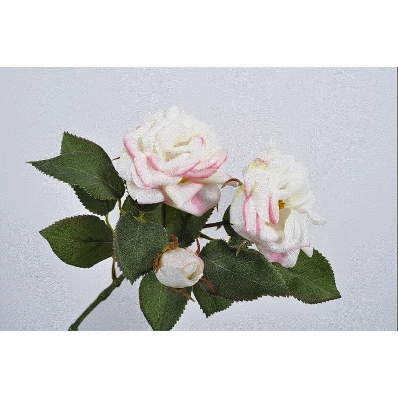 ROSE_BLANC ROSE_37cm_119031