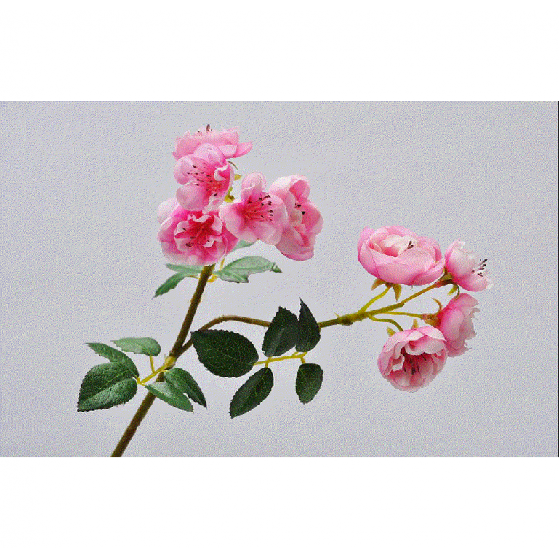 ROSE PICK _BEAUTY_30cm_108960