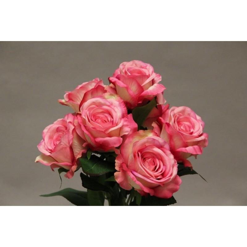 ROSE x7_ROSE_YM016_P