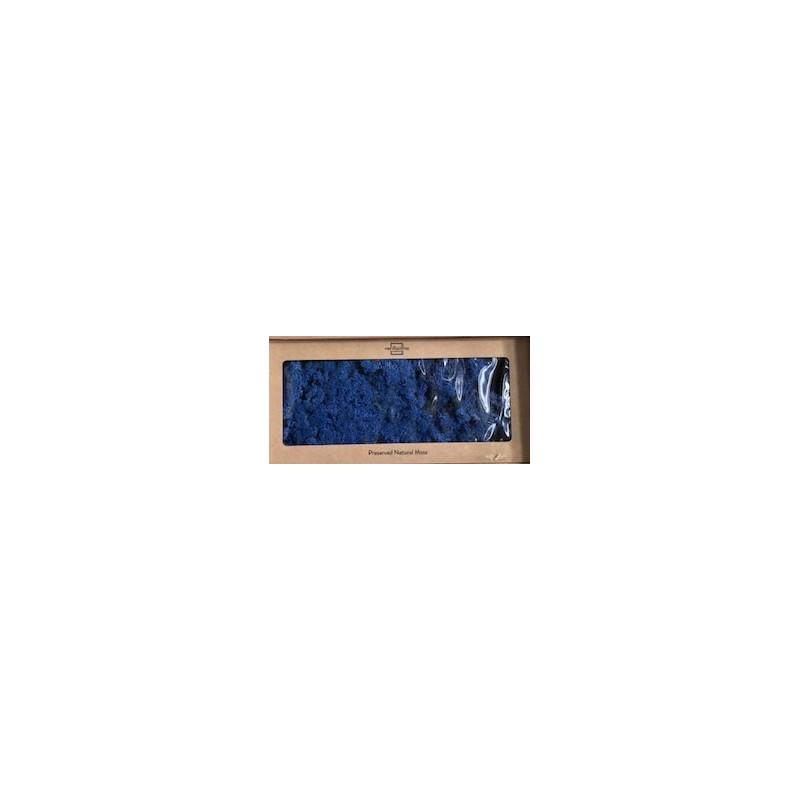 Lichen stabilisé Boite de 500g Bleu foncé