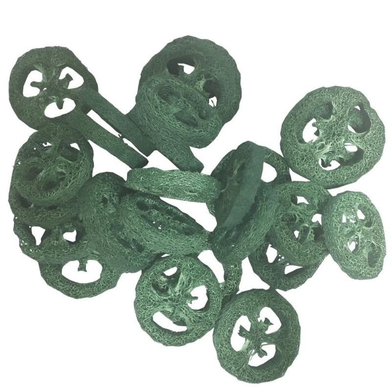 Luffa séché vert Ø 6,5cm