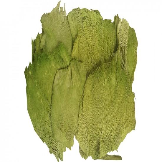 Sachet de toile de coco / palmfaser couleur vert 400g