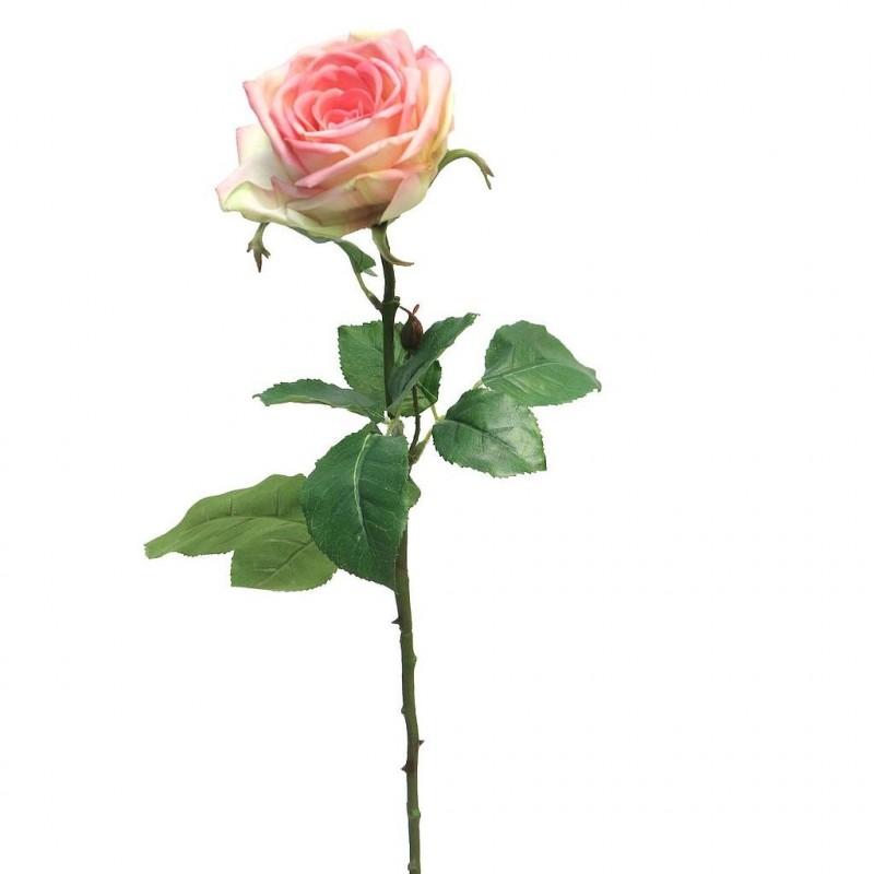 ROSE OUVERTE SUR TIGE SERVATI H68cm ROSE_12477-7