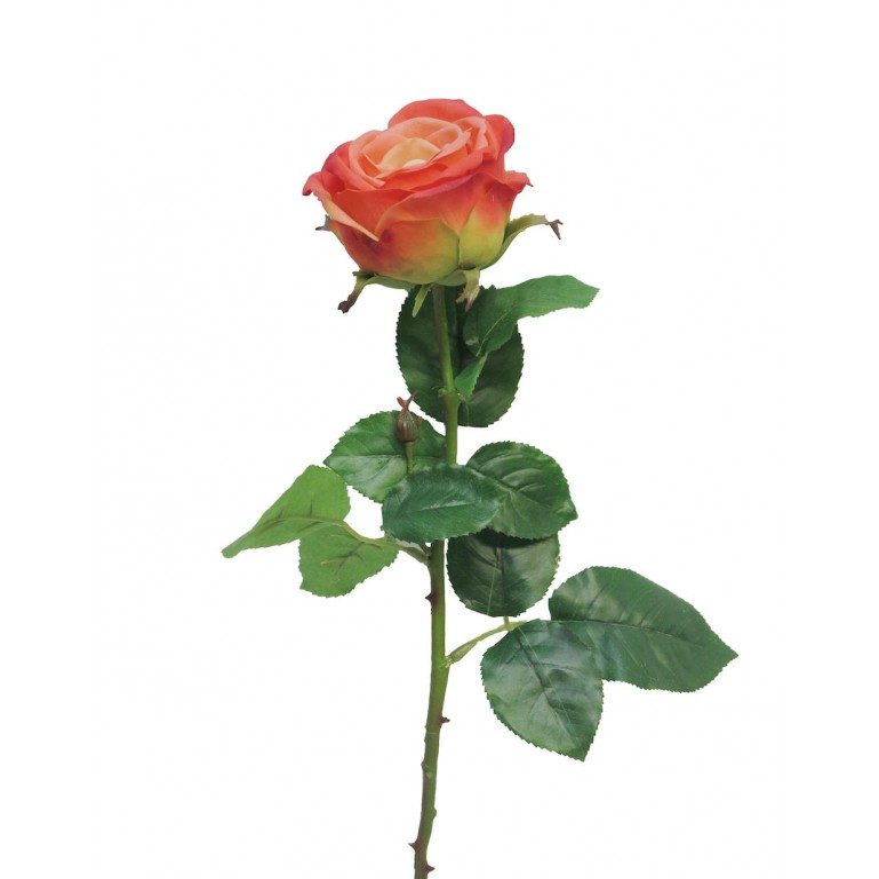ROSE OUVERTE SUR TIGE SERVATI H68cm ROSE PALE_12477-2