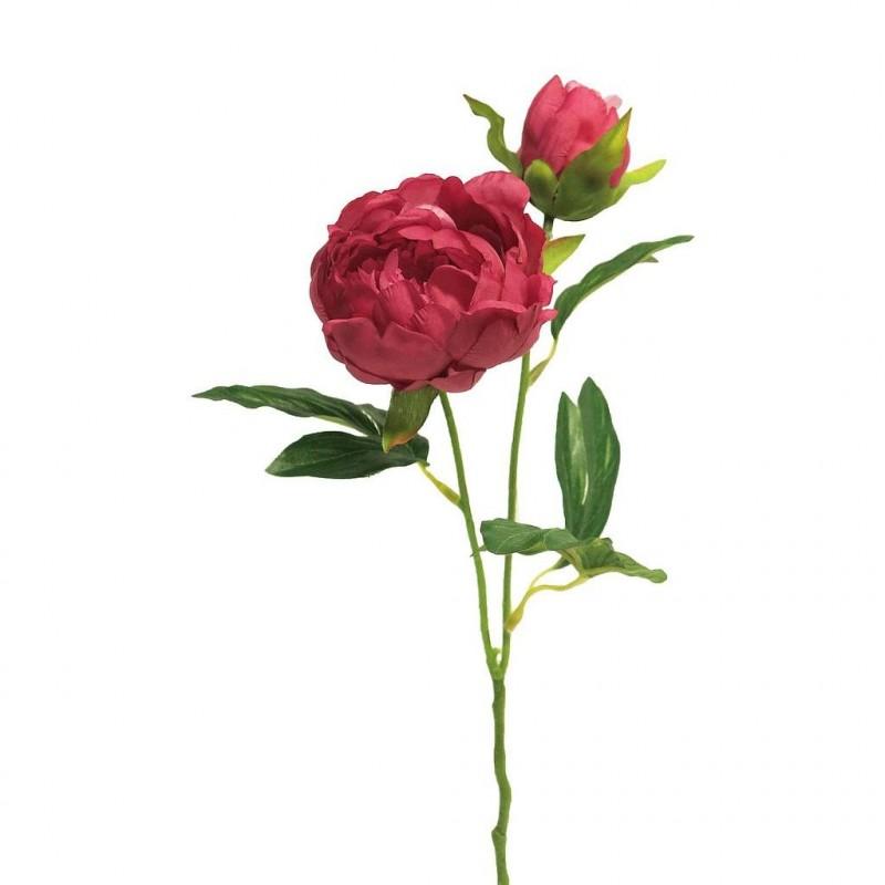 PIVOINE H40cm ROSE FUCHSIA_12876-6