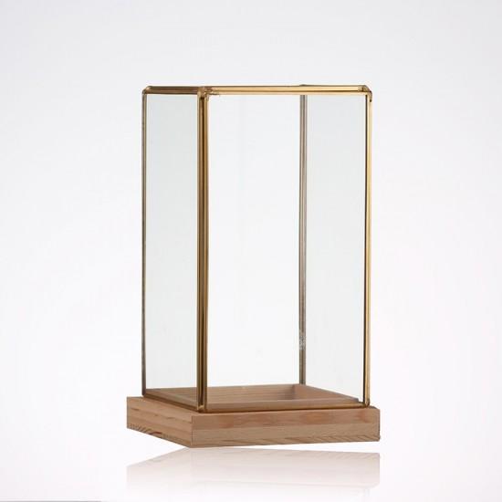 Terrarium rectangulaire en verre en forme de cloche 12x12x25cm