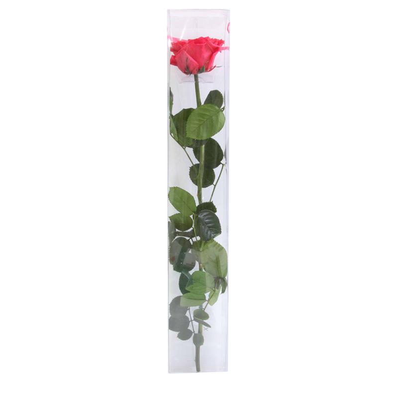 Rose stabilisée sur tige Premium Rose Foncé