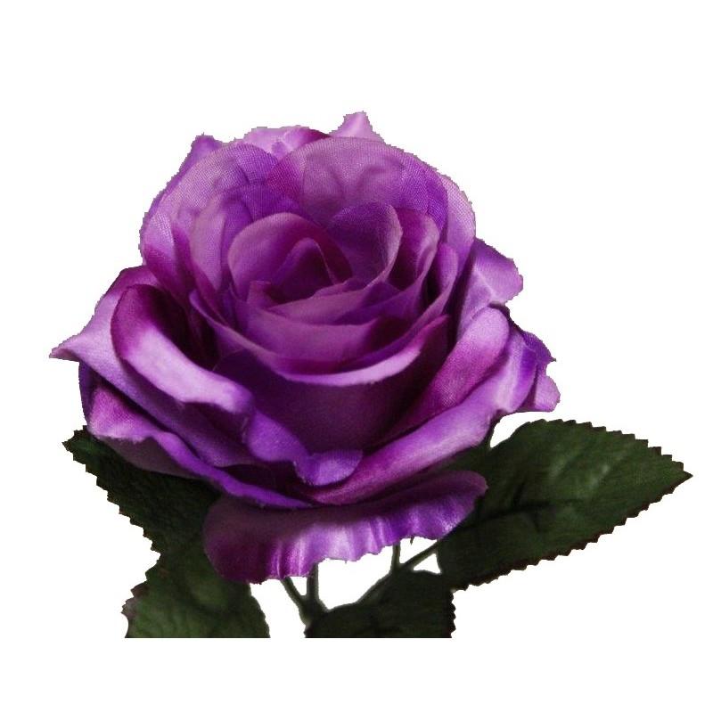 Rose de montage mauve X6
