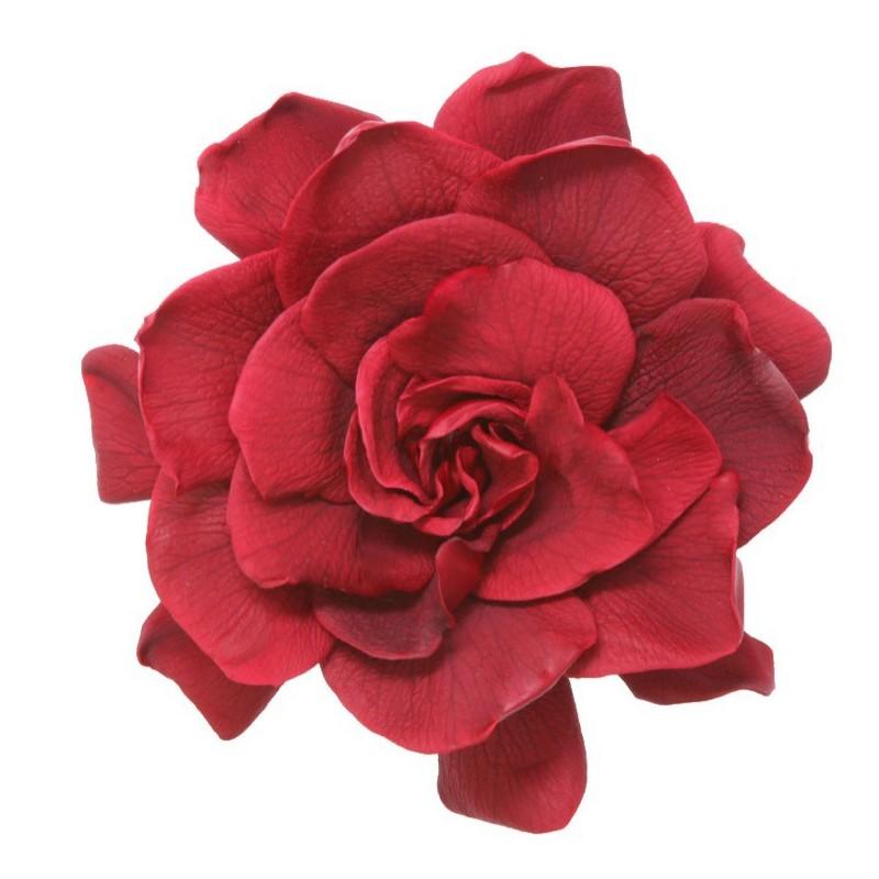 Gardenia stabilisé  Boite de 3 têtes Rouge Foncé