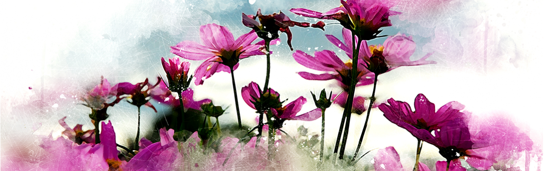 grossiste en accessoires pour fleuriste