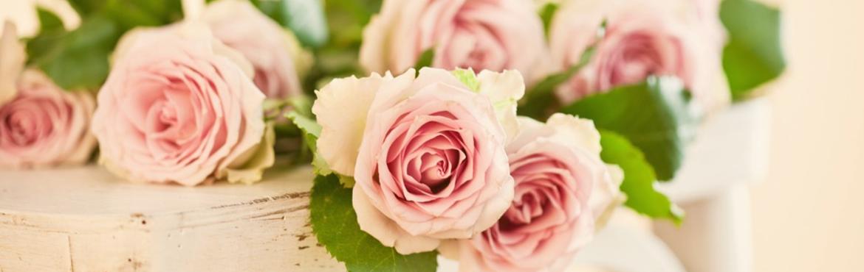 Rose stabilisée grossiste : Artiflor